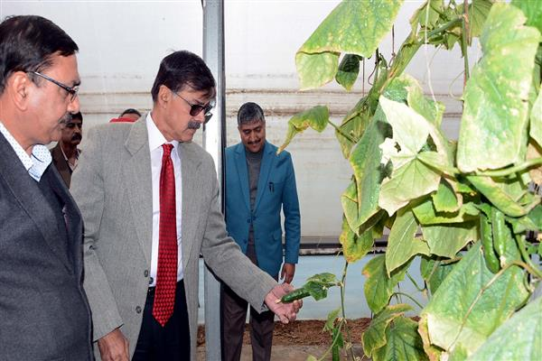 Advisor Kumar lays foundation of Agri-Mall | KNO