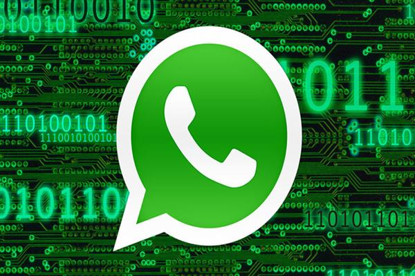 DSEK directs school heads to create WhatsApp groups of parents | KNO