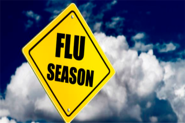 Don't panic, it is seasonal flu: DAK | KNO