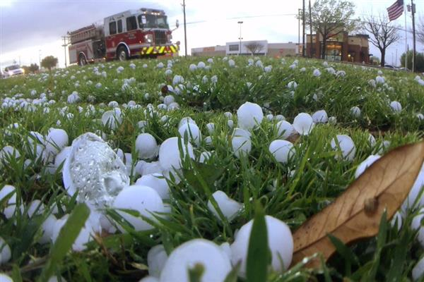 NC asks administration to recompense losses to hailstorm affected orchardists | KNO
