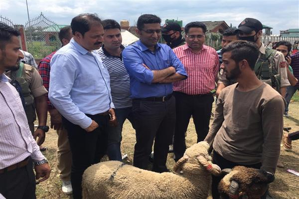 Eid al-Azha: DC Srinagar takes stock of facilities being set up in Downtown | KNO