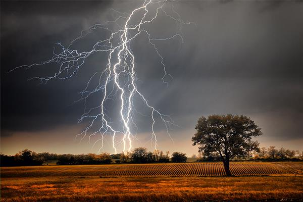 10-yr-old girl dies, 14 others injured due to lightning in Poonch village | KNO