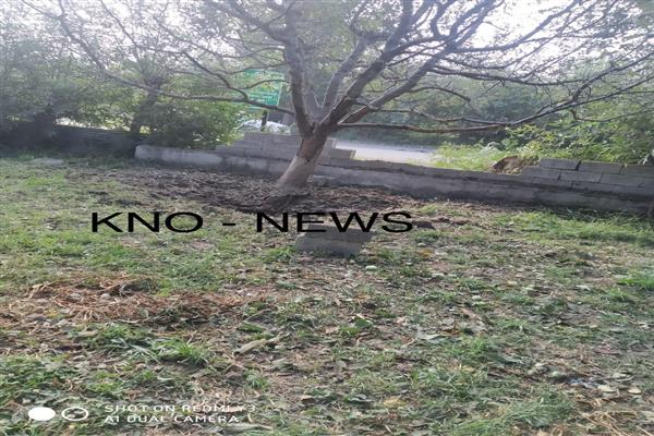 IED blast in Pulwama; CRPF man injured  | KNO